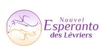Adopter un Lévrier avec l'Esperanto, c'est avant tout sauver un lévrier martyr